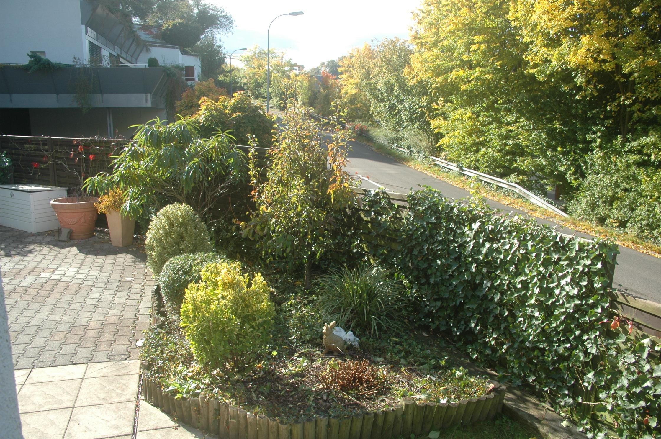 Nach dem Einsatz von Bütler-Gartenpflege - andere Ansicht