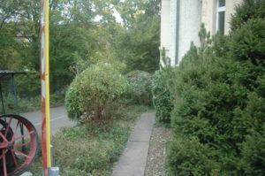 Nach dem Einsatz von Bütler-Gartenpflege